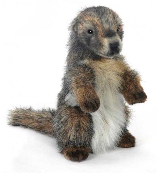 Murmeltier originalgetreu 23cm Marmot Hansa 6754 Stofftier Plüschtier