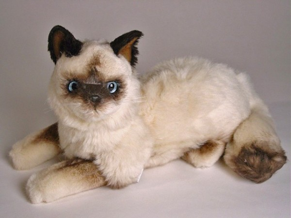 Piutre Liegende Birman Katze 35cm Lying Birman cat cm.35